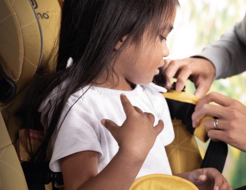Diono 1-2-1 Virtual Car Seat Fittings